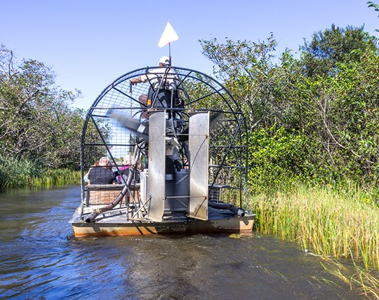 Everglades 30 Minute Airboat Eco Adventure