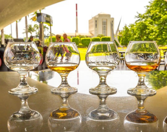 Bacardi Rum Distillery and San Juan Tour