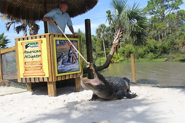 Gator Park Safari - General Admission