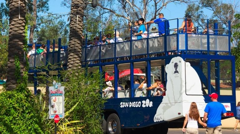 San Diego Zoo Tour + Transportation