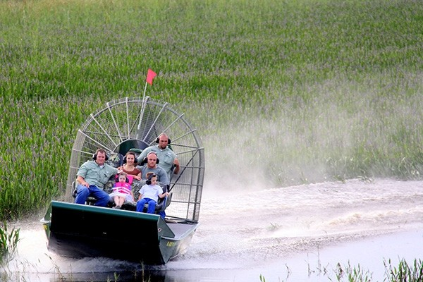 Wild Florida Airboats - 1 Hour Airboat tour, Wildlife Parks & Gator Demo