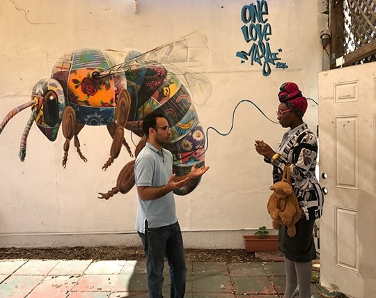 Art, Food, Wynwood Tour